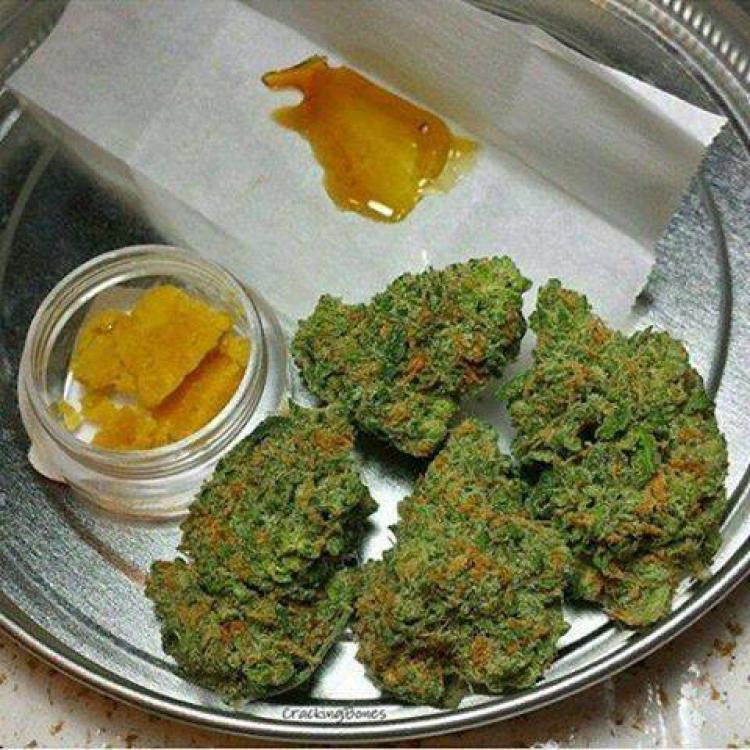 Foto  Buy weed CBD Herms online at https://www.medicarmarijuana.com/ CHV1598