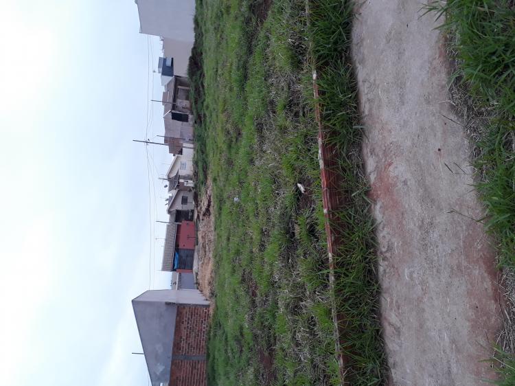 terreno em venda em arapongas paran